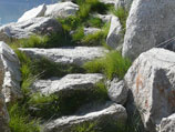 Natural, uncut stone steps placed in hillside